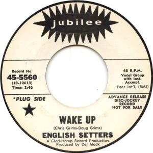 english-setters-67