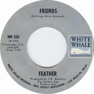 feather-70