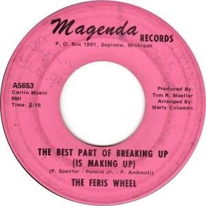 feris-wheel-67