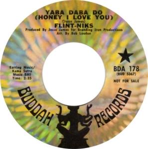 flint-niks-70