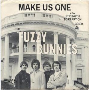 fuzzy-bunnies-68
