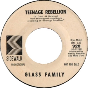 glass-family-67