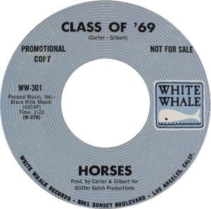 horses-69