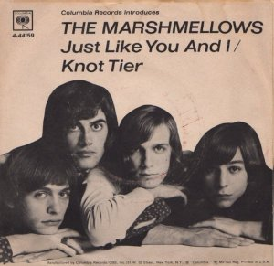 marshmellows-67