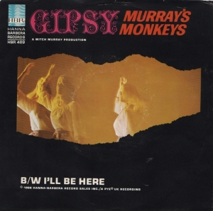 murrays-monkey-66