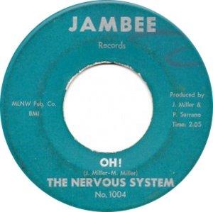 nervous-system-67