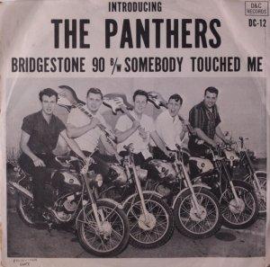 panthers-65-ny-xx-1