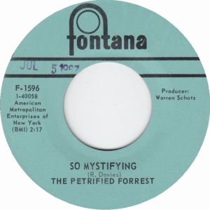 petrified-forrest-67