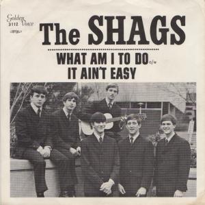 shags-67