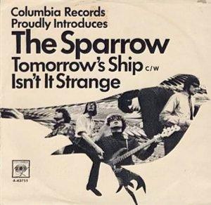 sparrow-66