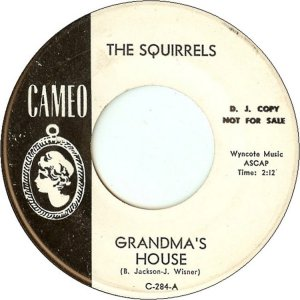 squirrels-63