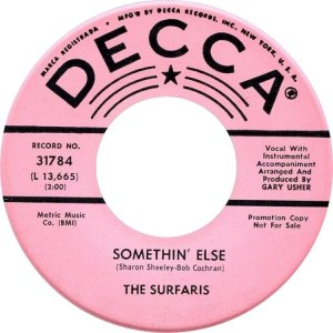 surfaris-65
