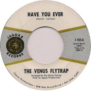 venus-flytrap-67