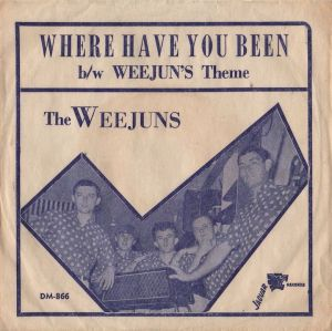 weejuns-66-n-carolina