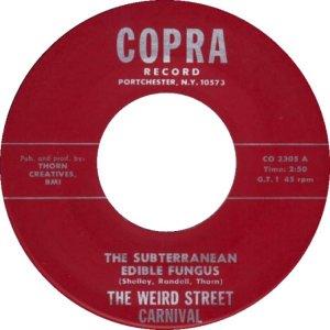 weird-carnaval-street-ny-68