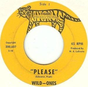 wild-ones-mass-65
