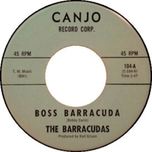 barracudas-64-01-a