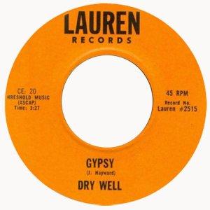 dry-well-ny-70
