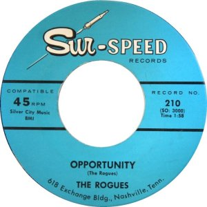 rogues-tn-65