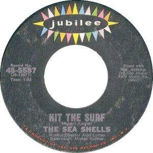 sea-shells-65-01-a