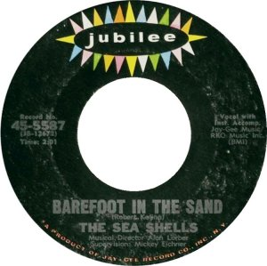 sea-shells-65-01-b