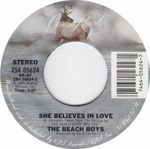 bb-beach-boys-45s-1985-03-d