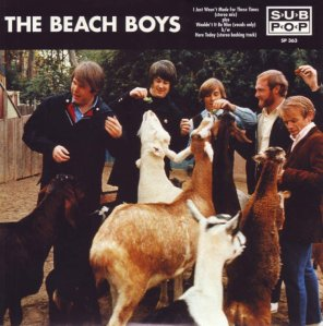 bb-beach-boys-45s-1996-01-a