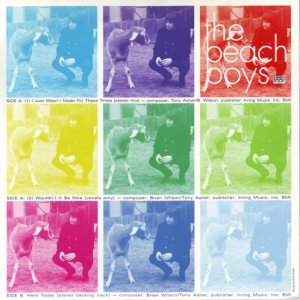 bb-beach-boys-45s-1996-01-b