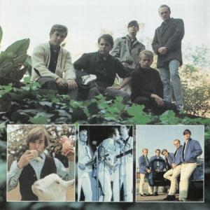bb-beach-boys-cd-lp-2001-03-e