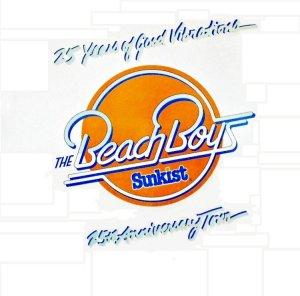 bb-beach-boys-lp-1986-01-a