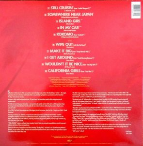 bb-beach-boys-lp-1989-01-b