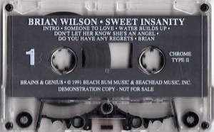 bb-brian-wilson-lp-1991-01-c