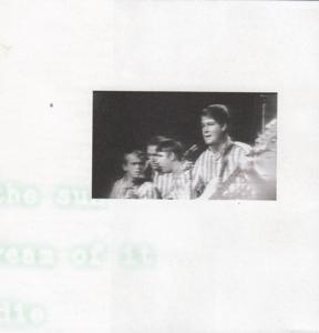 bb-brian-wilson-lp-1995-01-c