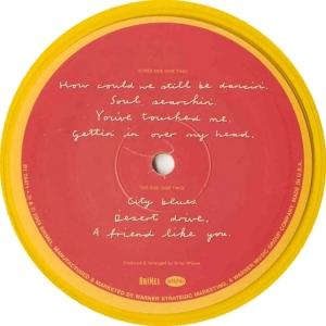 bb-brian-wilson-lp-2004-01-d