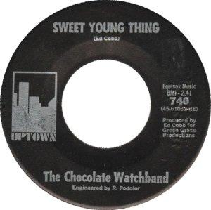 san-fran-chocolate-watch-band-67-01-c