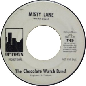 san-fran-chocolate-watch-band-67-02-a