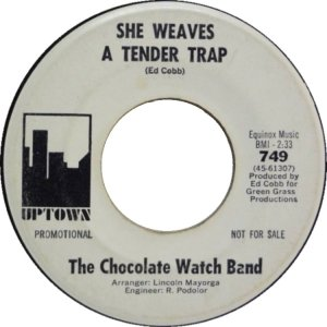 san-fran-chocolate-watch-band-67-02-b