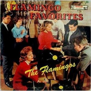flamingos-60-01-a