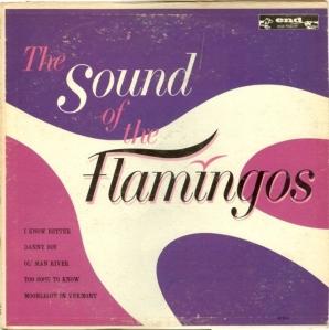 flamingos-62-01-a