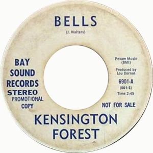 san-fran-kensington-forest-67-01-a