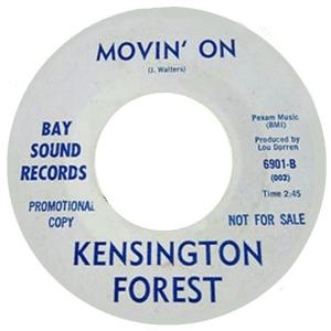 san-fran-kensington-forest-67-01-b