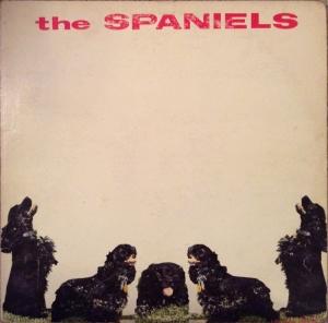 spaniels-60-01-a